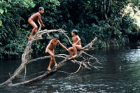 Tupi children playing in the Amazon river