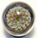 Petite Lotus Rainbow Art Glass Marble by Mark Black 21mm